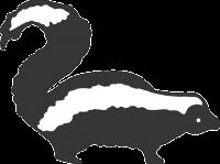 skunk-46170_640 (2)