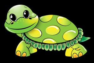 turtle-1021521_640 (2)