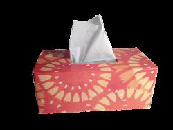 tissues-1000849_640 (2)